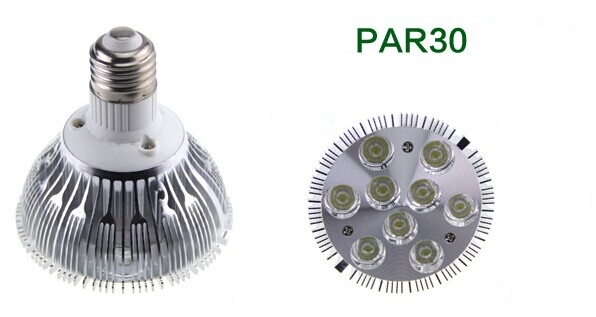 9W LED Par Light PAR30
