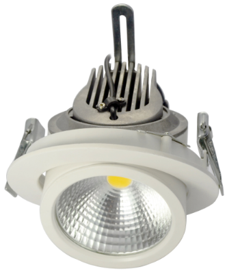 adjustable COB LED down light