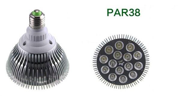 15W LED Par Light PAR38