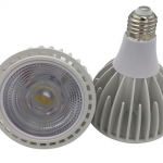 PAR30 High Power LED Spotlight