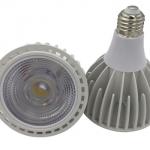 PAR30 High Power LED Spotlight